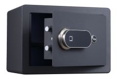 Biometrics Medium Elegant Safe